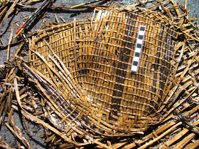 Qwu?gwes Wet Site Basketry, Cordage and Woodworking–Draft Final Report
