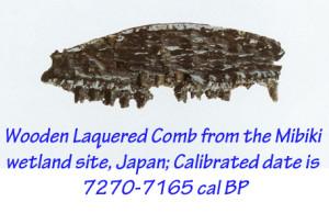 Laquered Comb