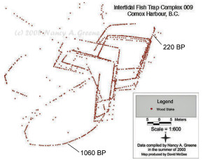 Comox fishtrap diagram